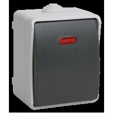 ВС20-1-1-ФСр Выключатель одноклавишный со свет. индикатором для открытой установки IP54 (Арт: EVS11-K03-10-54-DC)