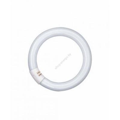 Люминесцентные лампы T9 L 32 W/840 G10Q