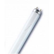 Трубчатая FLUORA L 15 W/77 люминесцентная лампа