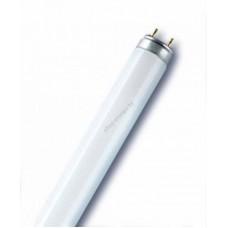 Трубчатая FLUORA L 18 W/77 люминесцентная лампа