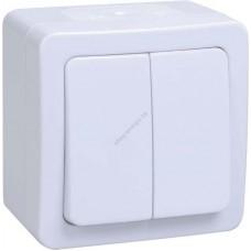ВС20-2-0-ГПБ выкл 2кл о/у IP54 (цвет клавиши:белый) ГЕРМЕС PLUS (Арт: EVMP20-K01-10-54-EC)