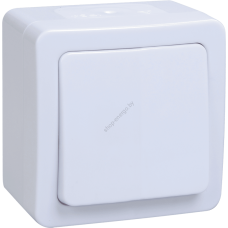 ВС20-1-0-ГПБ выкл 1кл о/у IP54 Гермес PLUS (цвет клавиши: белый) (Арт: EVMP10-K01-10-54-EC)